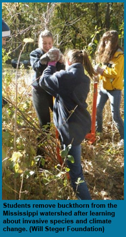 Students remove invasive species